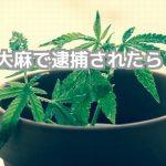 大麻執行猶予覚せい剤逮捕不起訴刑相場刑事弁護法律相談無料弁護士東京